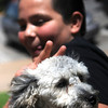 Carlos Vega pauses for a portrait with his dog, Buddy, during Downtown Dogfest on the Garfield County Courthouse lawn Saturday, June 14, 2014. (Staff Photo by BONNIE VCULEK)