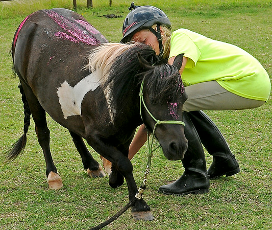 Oreo bows inside his ring as Elisa Salyer works with him during Enter His Gates Summer Camp southeast of Garber. (Staff Photo by BONNIE VCULEK)