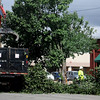 City of Enid employees remove fallen tree branches from in front of Octavio's Tacqueria after a severe thunderstorm with sustained winds moved across Garfield County around 3 p.m. early Thursday, June 12, 2014. (Staff Photo by BONNIE VCULEK)