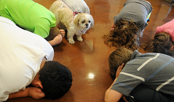 Children, from Applewood Learning Center at the YWCA, learn dog bite prevention steps during a special Northwestern Oklahoma State University science camp demonstration Wednesday, June 4, 2014. (Staff Photo by BONNIE VCULEK)