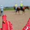 A June bug (lower left) scurries down a racing flag during the final advanced riding class for the summer at Enter His Gates southeast of Garber Friday, June 27, 2014. (Staff Photo by BONNIE VCULEK)