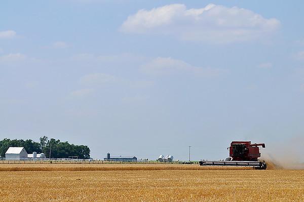 A combine harvest a field west of Breckinridge Saturday June 6, 2015. (Staff Photo by BILLY HEFTON)