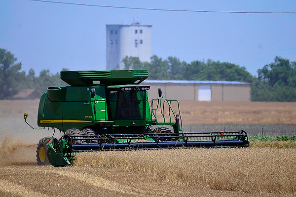 A combine harvest a wheat field south of Waukomis Wednesday June 8, 2016. (Billy Hefton / Enid News & Eagle)
