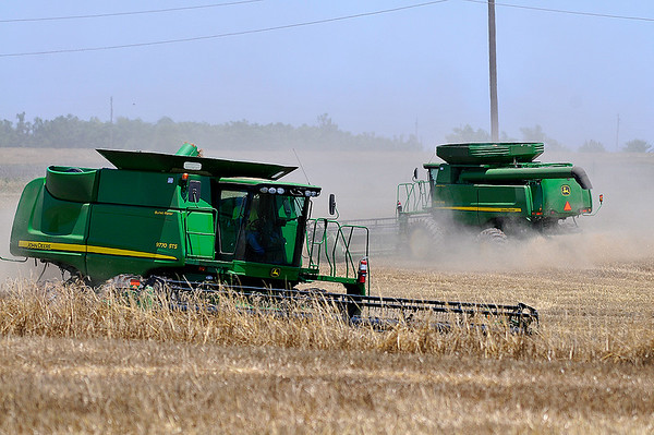 A pair of combines harvest a wheat field south of Waukomis Wednesday June 8, 2016. (Billy Hefton / Enid News & Eagle)
