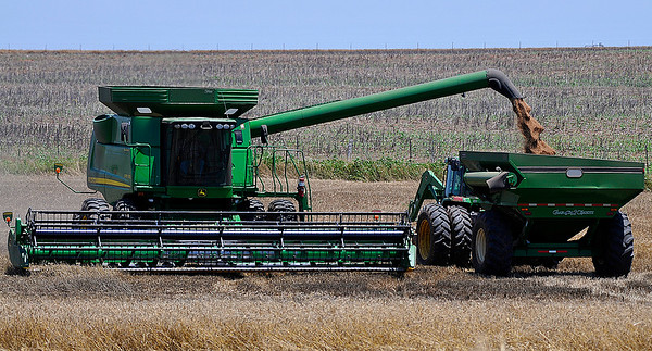 A combine empties wheat into a grain cart while harvesting a wheat field south of Waukomis Wednesday June 8, 2016. (Billy Hefton / Enid News & Eagle)