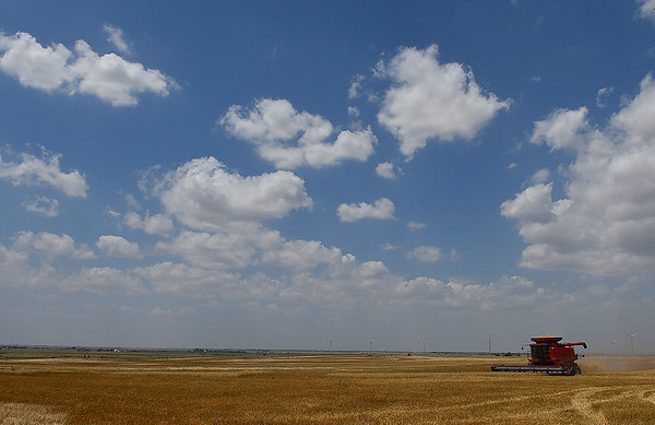 A combine harvest a field southeast of Kremlin Wednesday June 14, 2017. (Billy Hefton / Enid News & Eagle)