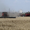 Combines harvest a wheat field south of Kremlin June 13, 2018. (Billy Hefton / Enid News & Eagle)