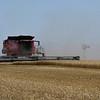 A combine harvest a wheat field south of Kremlin June 13, 2018. (Billy Hefton / Enid News & Eagle)