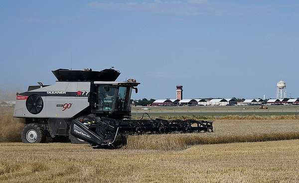 A combine harvest a wheat field across from Vance Air Force Base Thursday, June 13, 2019. (Billy Hefton / Enid News & Eagle)