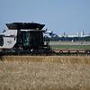 A combine harvest a wheat field on south Oakwood Thursday, June 13, 2019. (Billy Hefton / Enid News & Eagle)