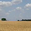 A combine harvest a wheat field south of Waukomis Wednesday, June 3, 2020. (Billy Hefton / Enid News & Eagle)