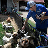 Bob Archer pets some of the dogs at Old Paws Rescue Ranch Thursday, June 10, 2021. (Billy Hefton / Endi News & Eagle)
