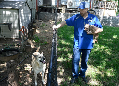 Bob Archer holds Huey as he talks about one of the larger dogs, Thunder, at Old Paws Rescue Ranch Thursday, June 10, 2021. (Billy Hefton / Endi News & Eagle)