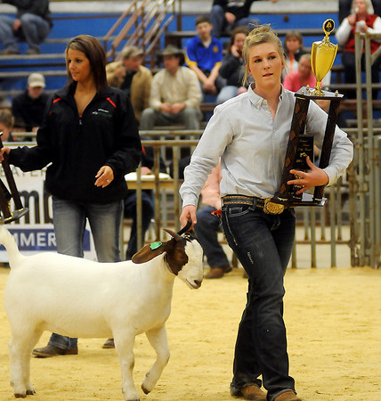 Karisa Pfeiffer, from Mulhall-Orlando FFA, exits the show ring with her Grand Champion Doe goat during the Northwest District Junior Livestock Show at the Chisholm Trail Expo Center Thursday, March 7, 2013. (Staff Photo by BONNIE VCULEK)