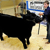 Colton DeMuth of Blackwell shows his grand champion steer Monday during the premium sale of the Northwest District Junior Livestock Show at the Chisholm Trail Pavilion. (Staff Photo by BILLY HEFTON)