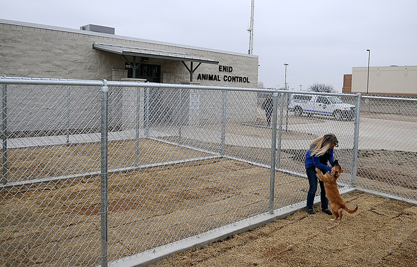 Rachel Hancock takes Cowboy for a run in the new Enid Animal Control exterior pens. Cowboy is just one of the canines available for adoption at the center. (Staff Photo by BONNIE VCULEK)