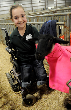 Shelby Frost, from the Mulhall 4-H Club, pauses with her one of her six ewes during the Northwest District Junior Livestock Show Wednesday, March 6, 2013. Frost won a NWDJLS showmanship jacket with her Shropshire named Sophie. (Staff Photo by BONNIE VCULEK)