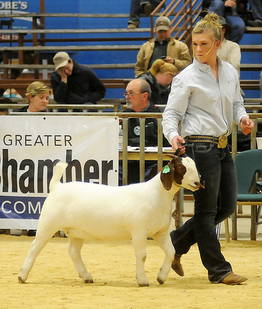 Karisa Pfeiffer shows her doe during the Northwest District Junior Livestock Show at the Chisholm Trail Expo Center Thursday, March 7, 2013. Pfeiffer's animal was selected as the NWDJLS Grand Champion Doe by judge Phil Stacy. (Staff Photo by BONNIE VCULEK)