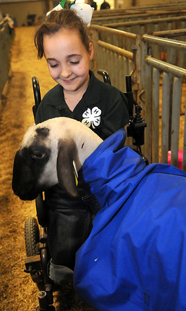 Shelby Frost, from the Mulhall 4-H Club, pauses with her Shropshire ewe, Sophie, during the Northwest District Junior Livestock Show Wednesday, March 6, 2013. Frost won a NWDJLS showmanship jacket for her handling efforts. (Staff Photo by BONNIE VCULEK)
