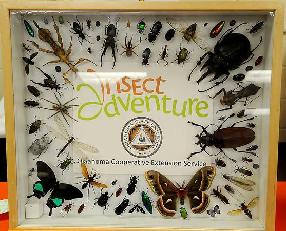 OSU Insect Adventure (Staff Photo by BONNIE VCULEK)