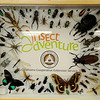 OSU Insect Adventure (Staff Photo by BONNIE VCULEK)
