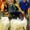 Northwest District Junior Livestock Show (Staff Photo by BONNIE VCULEK)