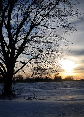 Sunlight glistens on a wintry landscape near Waukomis Monday, March 3, 2014. (Staff Photo by BONNIE VCULEK)