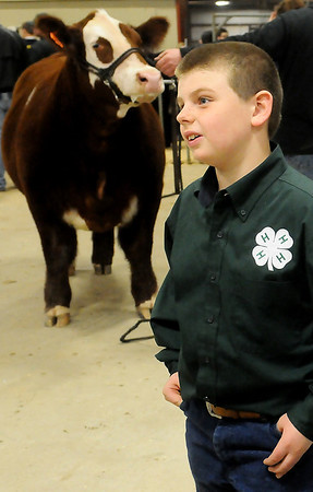 Colby Kokojan, a 9-year-old Drummond 4-H member, pauses near his reserve champion steer at the Northwest District Junior Livestock Show Friday, March 7, 2014. Kokojan will display Jo Jo in the premium sale Monday night at the Chisholm Trail Expo Center. (Staff Photo by BONNIE VCULEK)