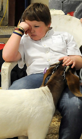 Tyler Trotter, from the Drummond 4-H Club, relaxes with his second place doe goat during the 80th annual Northwest District Junior Livestock Show at the Chisholm Trail Expo Center Thursday, March 6, 2014. (Staff Photo by BONNIE VCULEK)