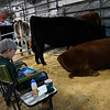 Braxton and Breckon Murray, from Omega, during some down time at the Northwest District Junior Livestock Show Wednesday March 1, 2017 at the Chisholm Trail Expo Center. (Billy Hefton / Enid News & Eagle)