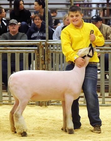 Livestock Show Brison Barton