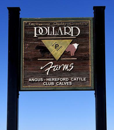 Progress Pollard Farms