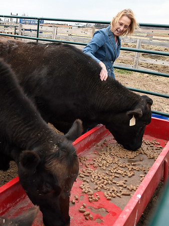 Linda Woodruff pets a wagyu cow during an interview at Silverwood Ranch southeaat of Enid Tuesday March 19, 2019. (Billy Hefton / Enid News & Eagle)