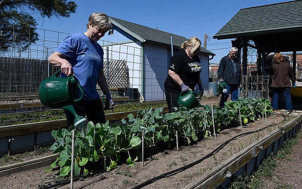 Diane Ford, Janelle Hamm, Dennis Posey and Martha Posey work in the Faith Farm Monday March 18, 2019. (Billy Hefton / Enid News & Eagle)