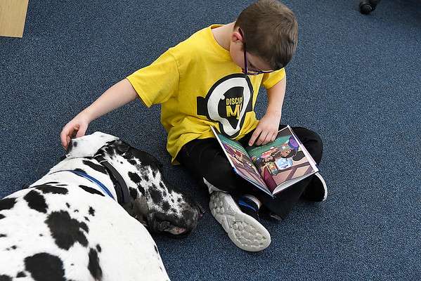 """Jacob Goldstein, 7, pets """"Doc"""", a Harllequin Great Dane, as he reads at the Public Library of Enid and Garfield County Wednesday March 6, 2019. (Billy Hefton / Enid News & Eagle)"""