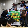 Paige Day, from the Mulhall-Orlando FFA, shows her grand champion barrow during the premium sale at the 86th Annual Northwest District Junior Livestock Show Monday March 9, 2020 at the Chisholm Trail Expo Center. (Billy Hefton / Enid News & Eagle)