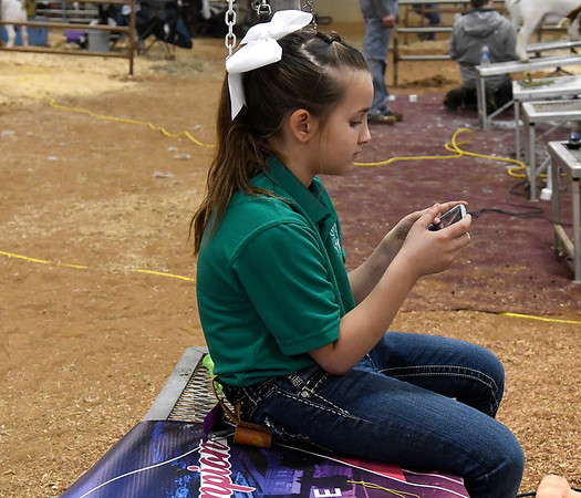 Hadley Estes, from the Garber 4-H, on her phone during some down time at the 87th Annual Northwest District Junior Livestock Show Friday, March 5, 2021 at the Chisholm Trail Expo Center. (Billy Hefton / Enid News & Eagle)