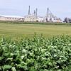 Progress_Ag & Energy_Johnston Seed Company
