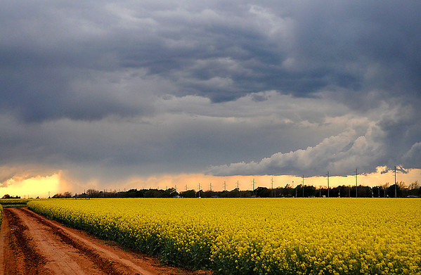 Looking northwest at a passing thunderstorm from south Oakwood Rd. Wednesday. (Staff Photo by BILLY HEFTON)