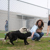 April Danahy and Rachel Hancock play with three of the dogs available for adoption at Enid Animal Control Saturday, May 18, 2013. (Staff Photo by BONNIE VCULEK)