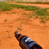 """A discarded beer bottle lies along north Cleveland in garfield County Tuesday. The Garfield County Sheriff office has seen a recent surge in """"field parties"""" out in the county.(Staff Photo by BILLY HEFTON)"""