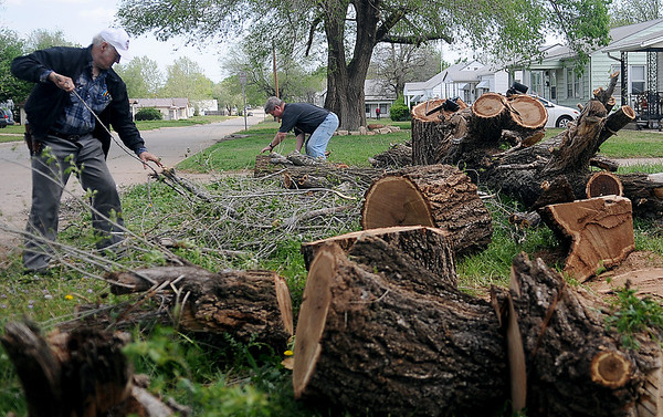 Frank Bush (left) and Milan Morgan remove two trees from Bush's front yard at 1617 S. Monroe Wednesday, May 8, 2013. (Staff Photo by BONNIE VCULEK)