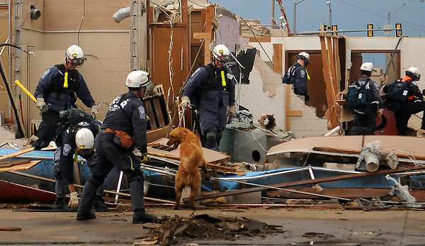 Search and Rescue workers use a life K-9 as they check destroyed property in Moore, Okla. Tuesday, May 21, 2013. Gov. Mary Fallin, confirmed that 24 had been killed including 9 children, during a news conference at the Moore City Hall, 301 N. Broadway. (Staff Photo by BONNIE VCULEK)