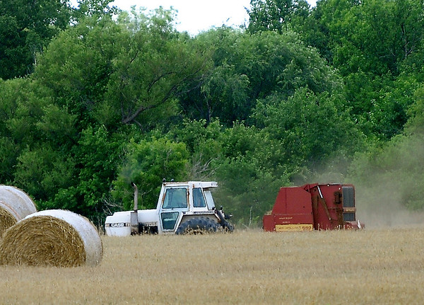 An area farmer bales a field of wheat south of Enid Thursday, May 29, 2014. Drought conditions have decreased the wheat yield this year, forcing  some farmers to cut and bale their wheat instead of harvesting the crop.  (Staff Photo by BONNIE VCULEK)