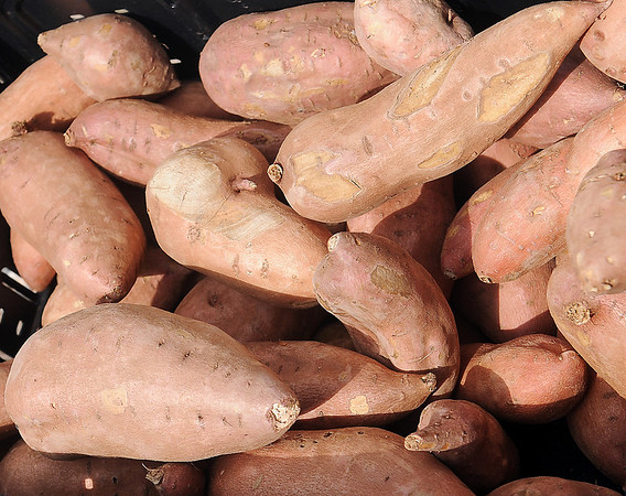 Organically grown sweet potatoes are available at Rowdy Stickhorse during Enid Farmers Market Saturday, May 17, 2014. (Staff Photo by BONNIE VCULEK)