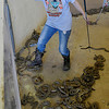 "Heather Looper uses her boot to move snakes around while working in the ""Den of Death"" during the 75th Annual Okeene Rattlesnake Round-up Sunday in Okeene. (Staff Photo by BILLY HEFTON)"