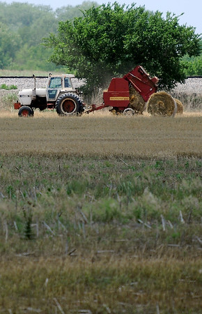 An area farmer bales a field of wheat south of Enid Thursday, May 29, 2014. Drought conditions have decreased the wheat yield this year, forcing  some farmers to cut and bale their wheat instead of harvesing the crop.  (Staff Photo by BONNIE VCULEK)