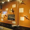 VAFB 75th Anniversary Exhibit