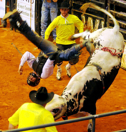 Rodeo bull fighters rush in to assist a PBR bull rider who flies off a bucking Brahman bull during the 2013 Enid PBR Challenge at the Enid Event Center Saturday, Nov. 16, 2013. (Staff Photo by BONNIE VCULEK)