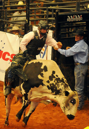 A PBR bull rider clutches a bull rope as he rides a bucking Brahman bull during the 2013 Enid PBR Challenge at the Enid Event Center Saturday, Nov. 16, 2013. (Staff Photo by BONNIE VCULEK)